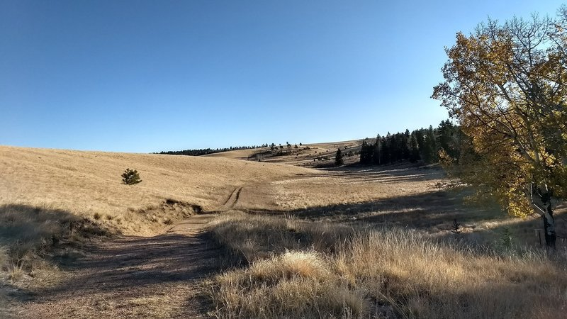 Trail leading off into the horizon