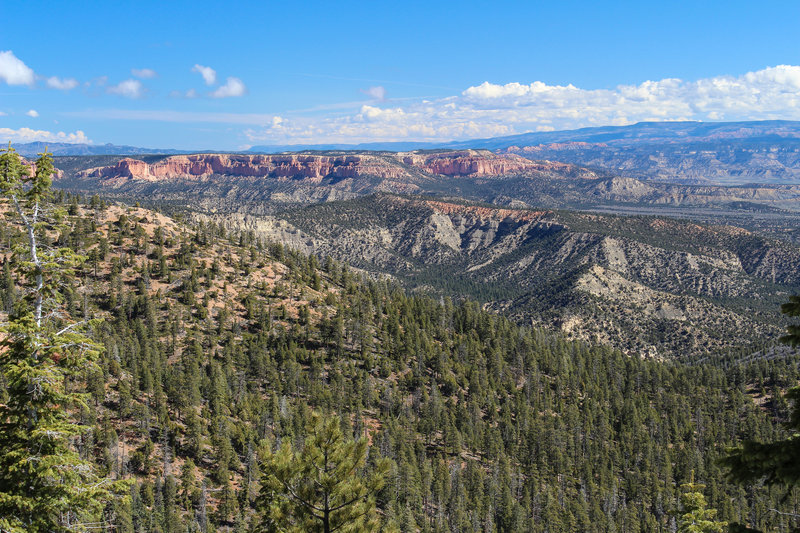 View north across Bryce Canyon National Park from Riggs Spring Loop Trail