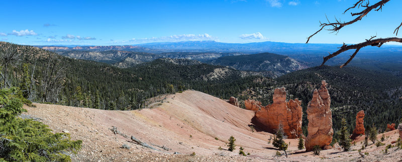 Panoramic view across a few lone hoodoos