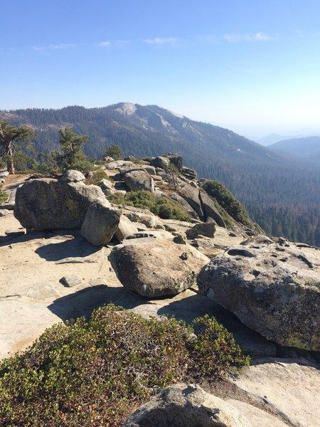 View overlooking Redwood Mountain Grove