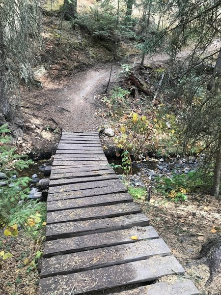 Bridge on trail.