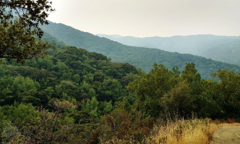 Barlow Road Trail runs through the rugged Santa Cruz Mountains