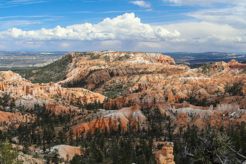 View into the Bryce Canyon amphitheater from Rim Trail.
