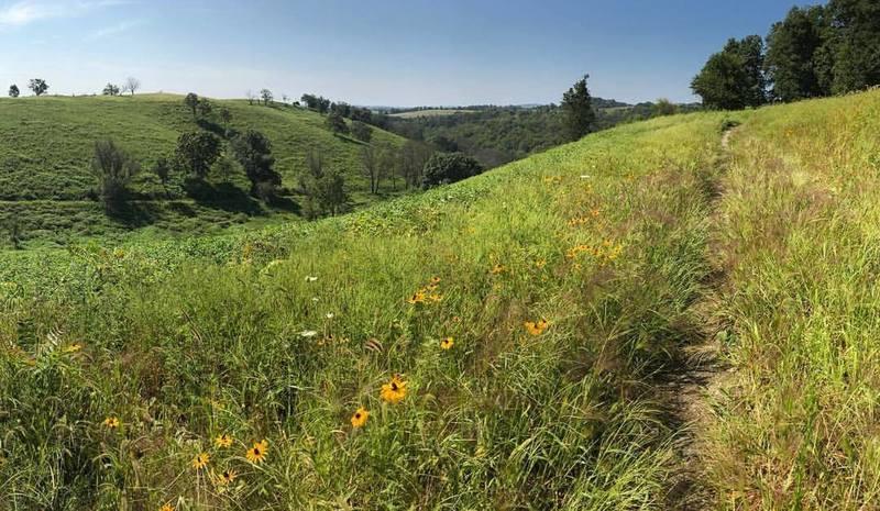 Trexler Border Trail