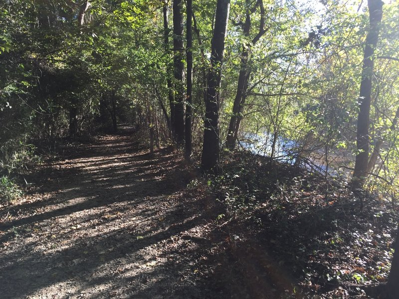 River side of the trails