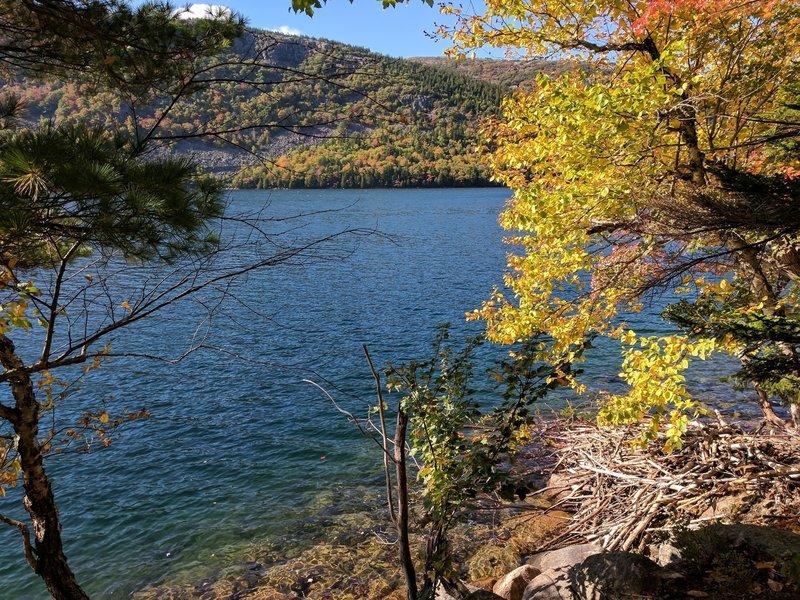 East shore of Jordan Pond in the Fall.