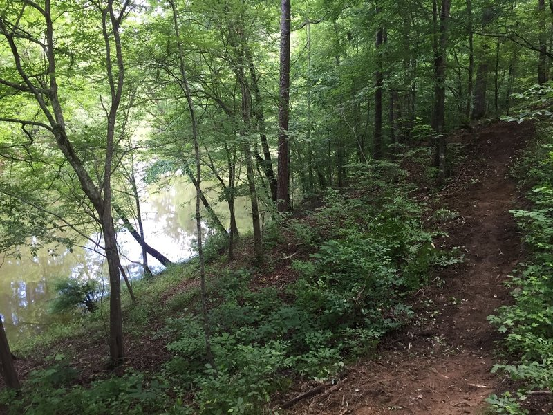 Trail runs along the west side of Allatoona Creek. Beautiful area of the park.