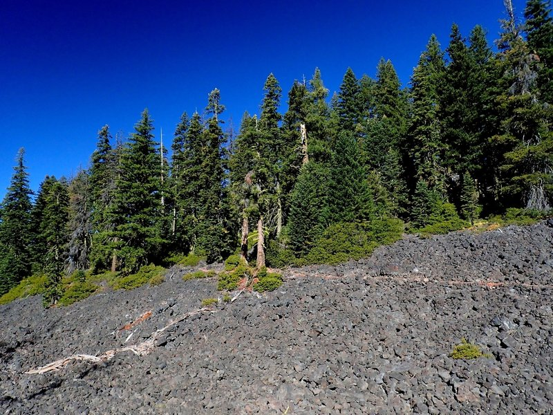 The trail goes through lava flows on the west side of Brown Mountain