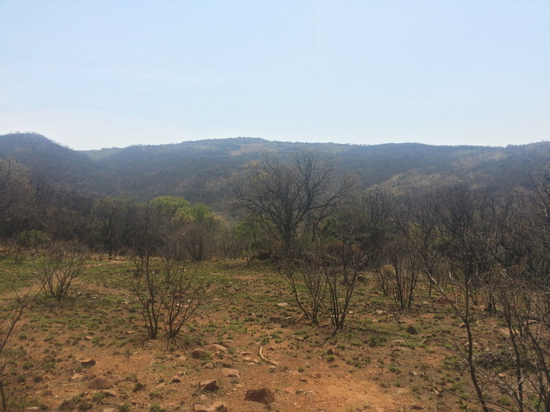 A view from the western path of the Klipriviersberg Nature Reserve