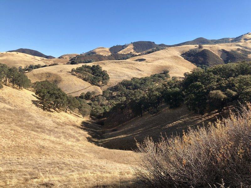 Falcon Road Trail