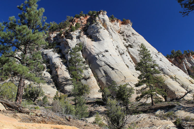 Amazing rock formations next to East Rim Trail.