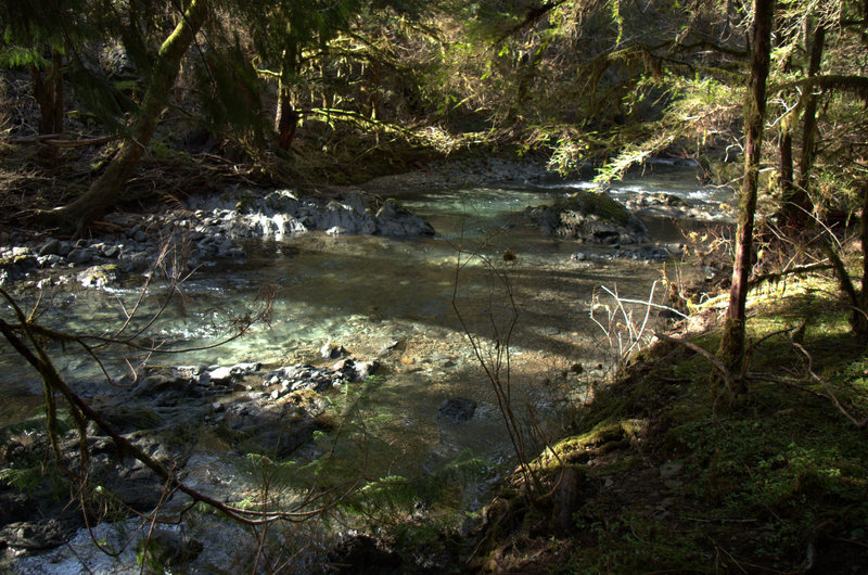 Briggs Creek from the trail.
