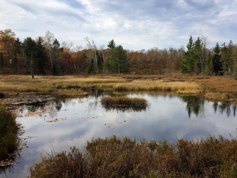 Pond near Mahingan Lookout.