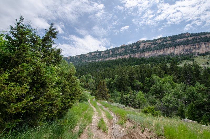 Great views near the William J. Mentock Trail.