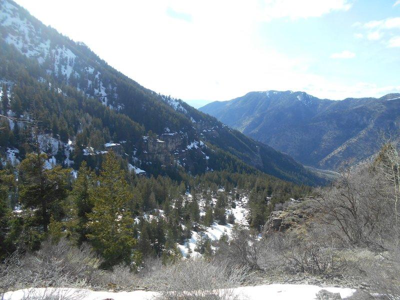 Looking down into Logan Canyon.