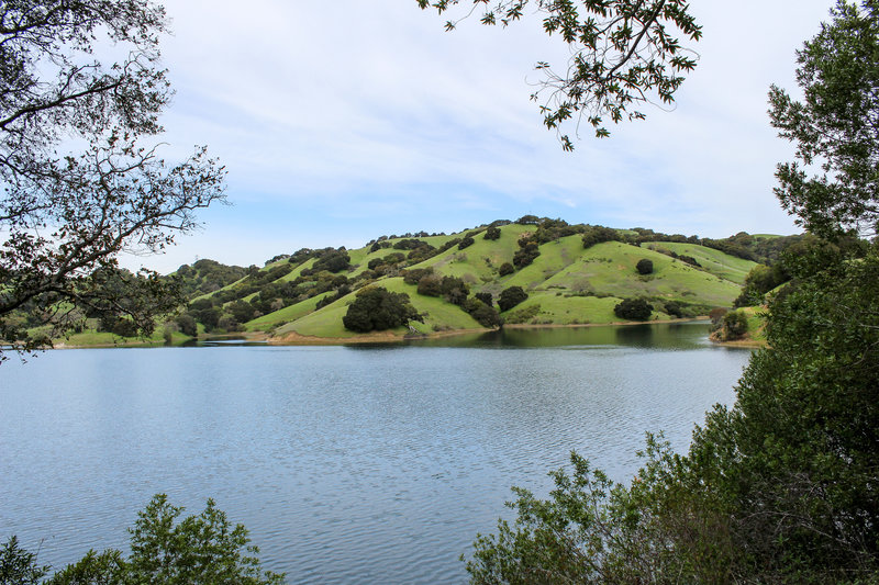 Briones Reservoir from Oursan Trail.