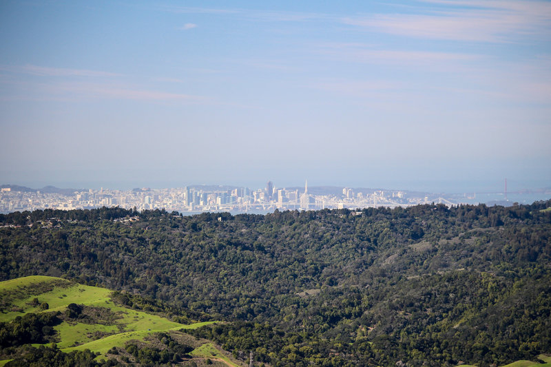San Francisco skyline from Rocky Ridge