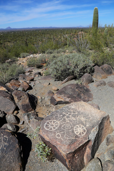 Petroglyphs at Signal Hill Saguaro National Park