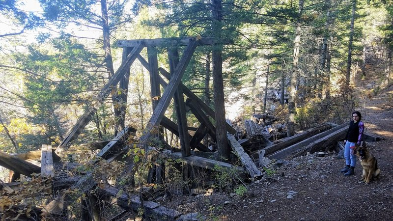 Remains of another railroad Trestle