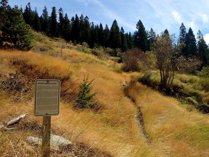 Where the trail crosses the 1983 landslide.