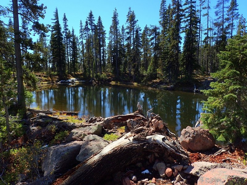 One of the small, unnamed lakes along the Divide Trail