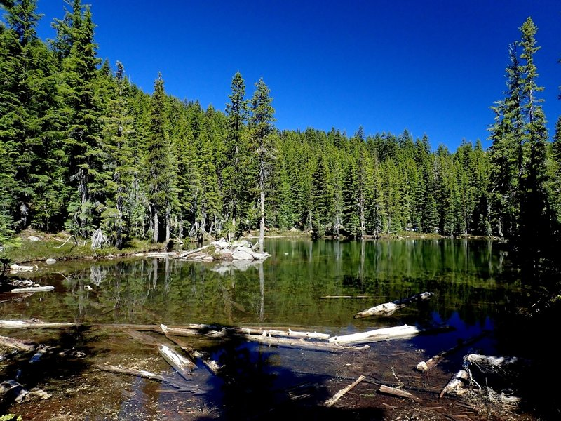 A small, unnamed lake near the bottom of the Snow Lakes Trail