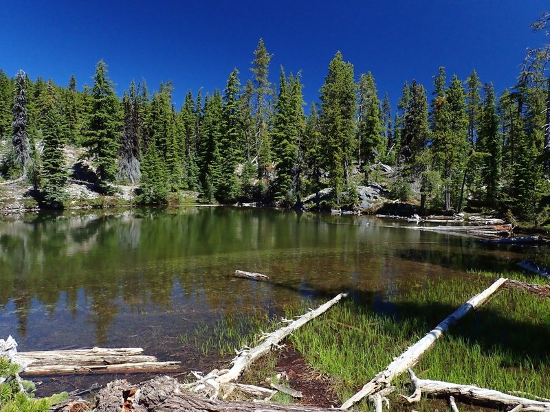 One of the Snow Lakes just east of the PCT