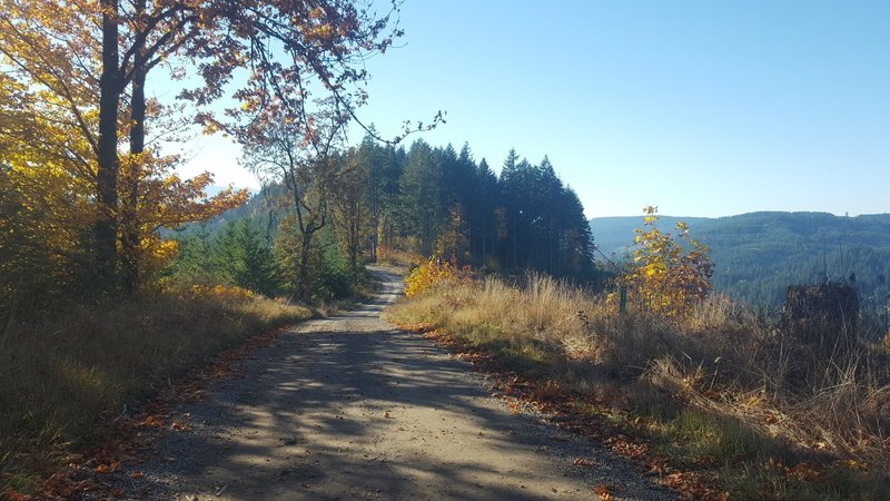 Old peak road in the fall.