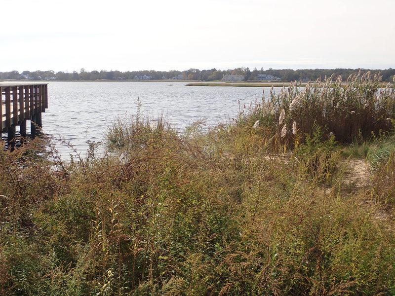 Black Fish Cove on Navesink River