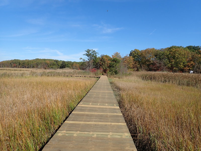 Crabbing Bridge boardwalk