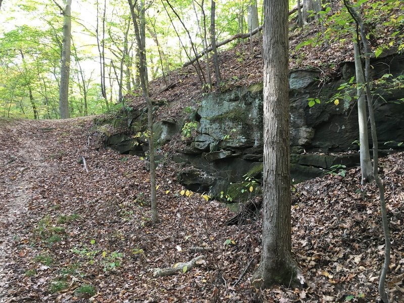 Rock Outcropping along the trail.