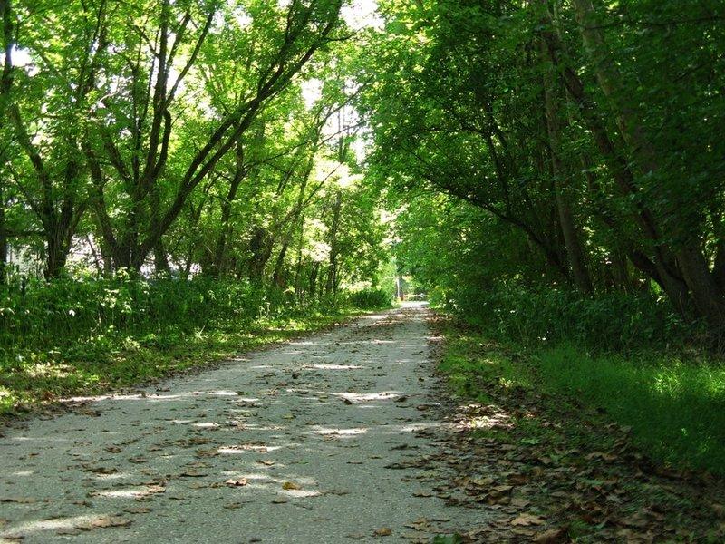 Torrey C. Brown Rail Trail.