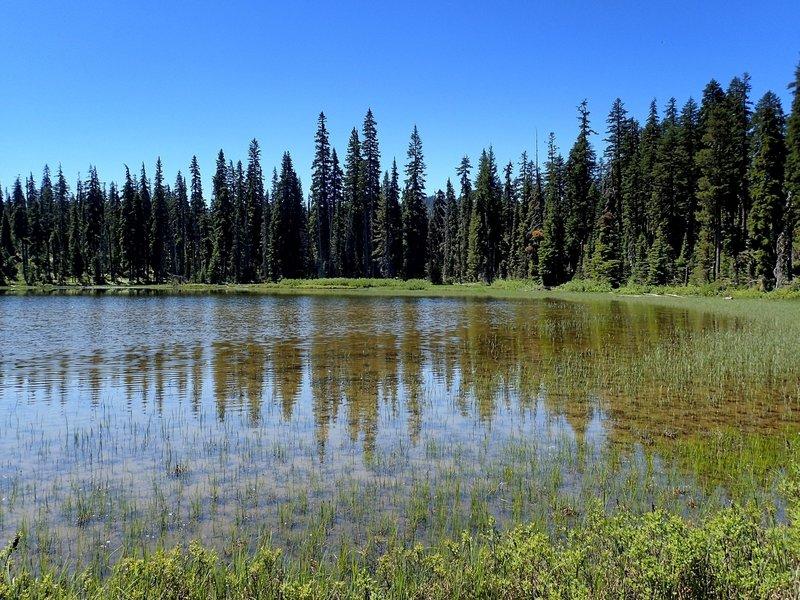 Mud Lake.