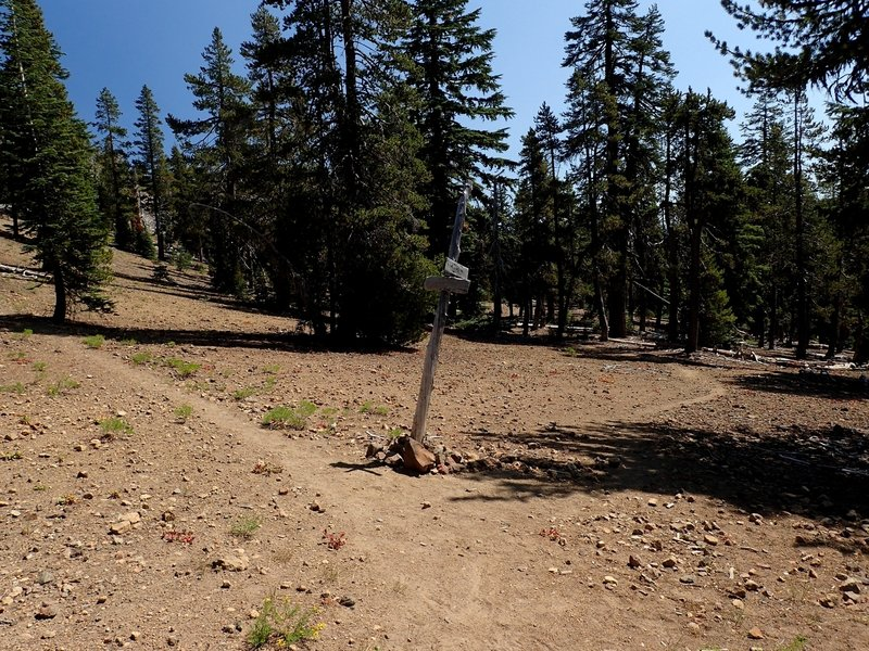 Junction of the Mountain Lakes Trail and the #3727 loop trail