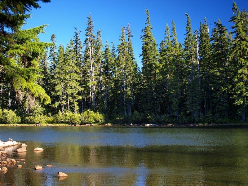 Dee Lake