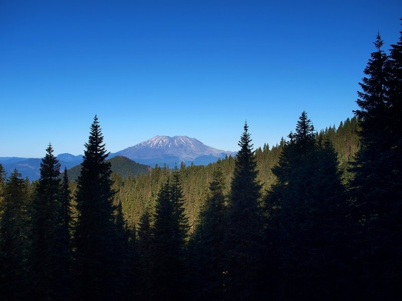 Mount St. Helens from the Placid Lake Trail