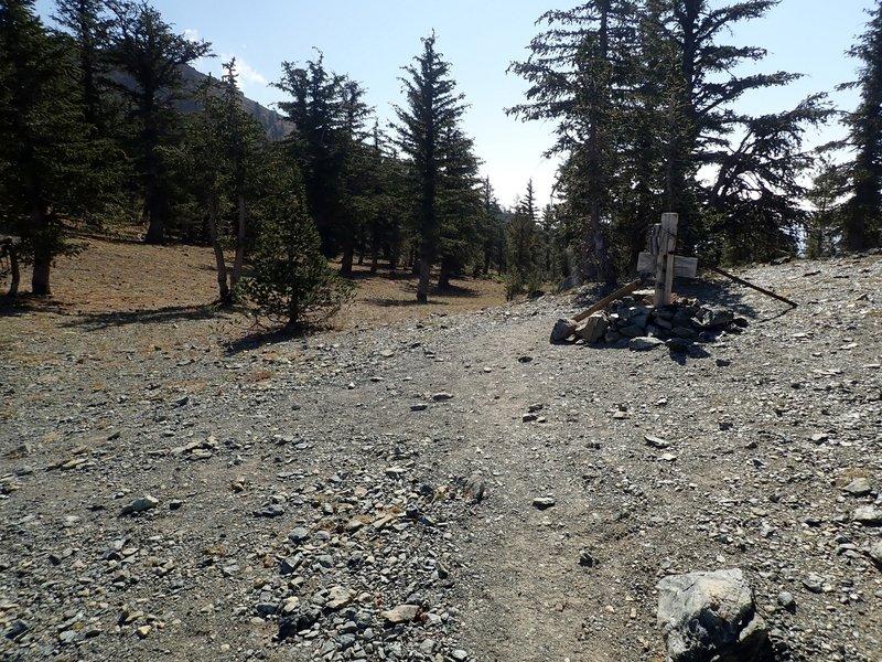 The Sisson-Callahan Trail crosses Deadfall Summit below Mount Eddy