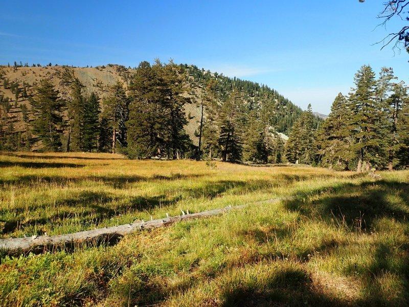Meadows near Middle Deadfall Lake