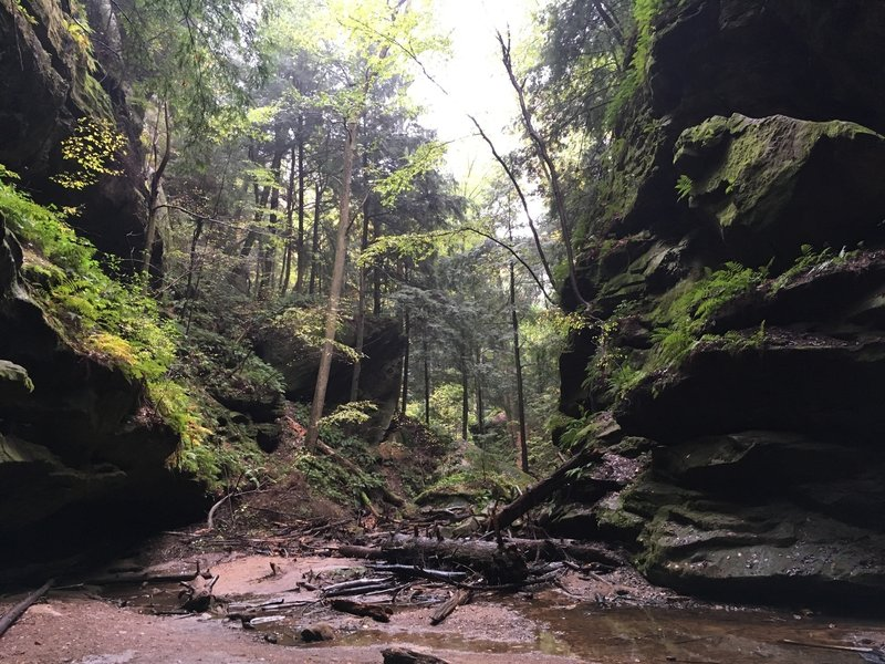 Looking down the gorge