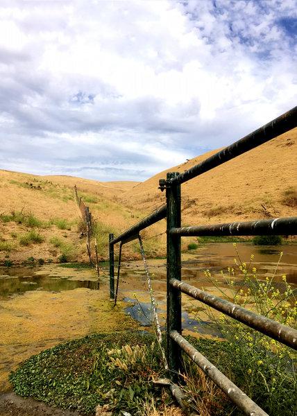 Fenceline up the Tamcan