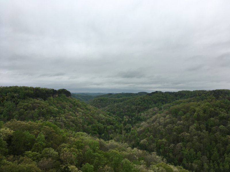 Spaas Creek Overlook off Hatton Ridge