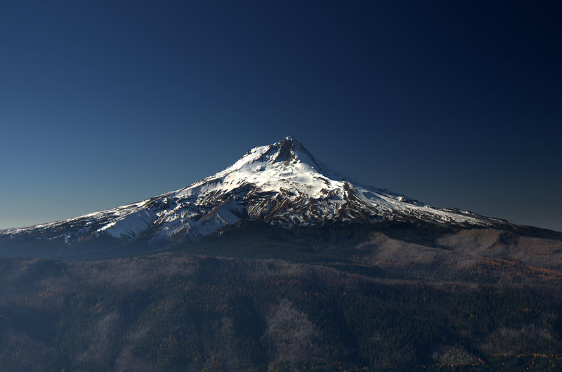 Mount Hood from Lookout Mountain
