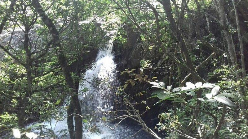 Mangue waterfall.