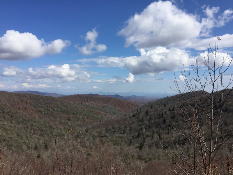 Expansive views across the Smoky Mountains from along the Graveyard Ridge Trail