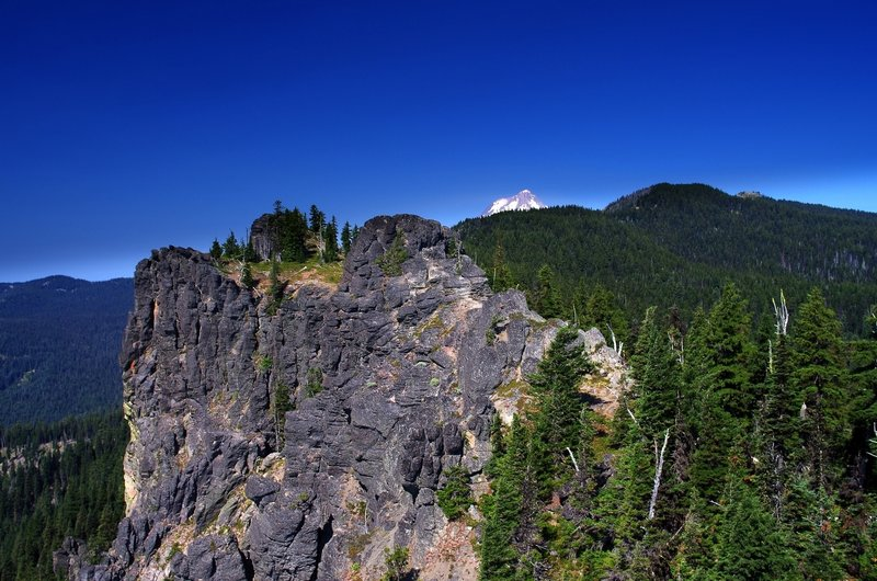 The view from near the end of the Fret Creek Trail