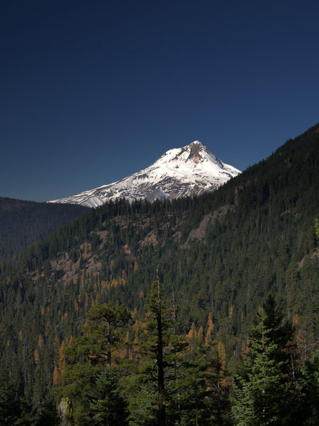 Mount Hood from along the Badger Creek Cutoff Trail