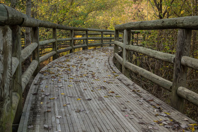 The beautifully constructed boardwalk at the entrance to CMHP