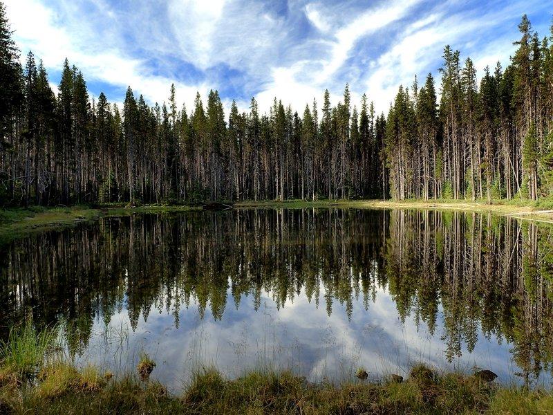 Orris Pond