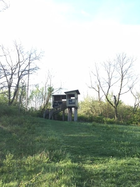 Bird Blind on the connector trail
