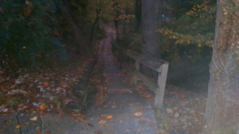 Stairs to Crabtree Creek Trail